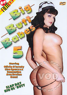 Big Butt Babes 5 Box Cover