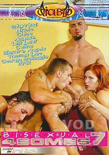 Bisexual 4somes 7 Box Cover
