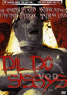 Dildo Sissys Box Cover