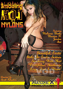 Smoking Hot In Nylons Box Cover