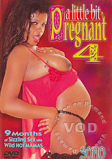 A Little Bit Pregnant 4 Box Cover