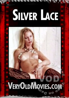 Silver Lace Box Cover