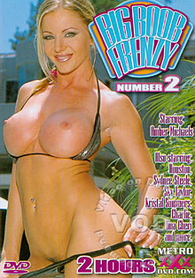 Big Boob Frenzy Number 2 Box Cover