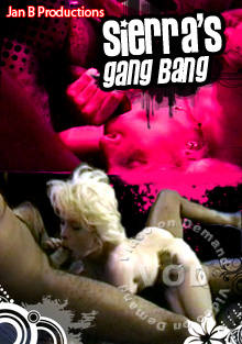 Sierra's Gang Bang Box Cover