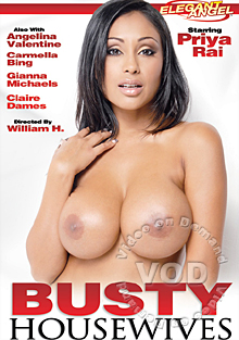 Busty Housewives Box Cover