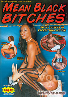 Mean Black Bitches Box Cover