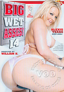 Big Wet Asses 14 Box Cover