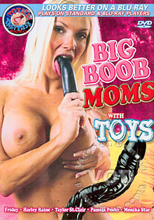 Big Boob Moms With Toys Box Cover