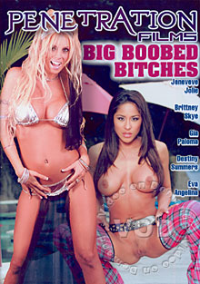 Big Boobed Bitches Box Cover