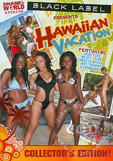Hawaiian Vacation Box Cover