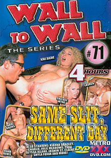 Wall To Wall The Series 71 - Same Slit, Different Day Box Cover