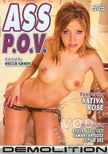 Ass P.O.V Box Cover
