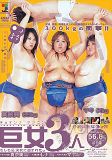3 Big Fat Girls Box Cover
