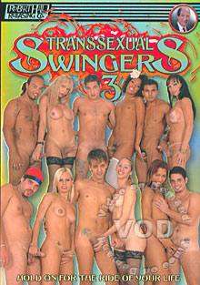 Transsexual Swingers 3 Box Cover