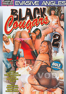 Black Cougars 2 Box Cover
