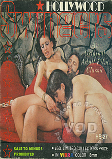 Hollywood Swinger 27 Box Cover
