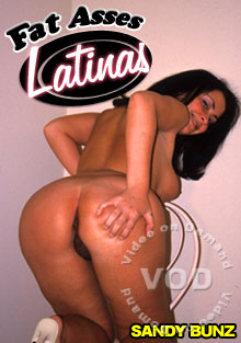 Fat Assed Latinas Box Cover