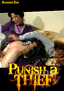 Punish A Thief Box Cover