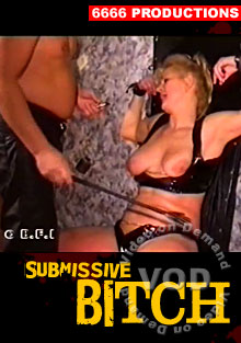 Submissive Bitch Box Cover