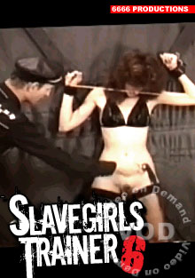 Slavegirls Trainer 6 Box Cover