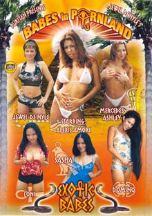 Babes in Pornland: Exotic Babes Box Cover