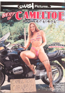 Best Of Cameltoe Perversions Box Cover