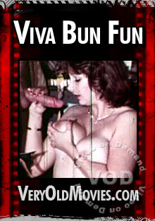 Viva Bun Fun Box Cover