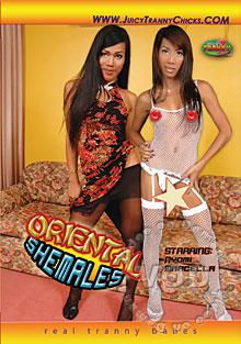 Oriental Shemales Box Cover
