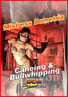 Caning And Bullwhipping Box Cover