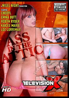 Ass In The Attic Box Cover