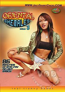 Oriental Shemales 3 Box Cover