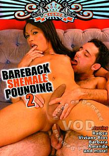 Bareback Shemale Pounding 2 Box Cover