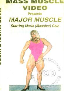 MM361 - Major Muscle Box Cover
