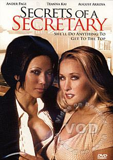 Secrets Of A Secretary Box Cover