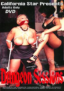 Dungeon Sessions Box Cover