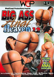 Big Ass Anal Heaven 12 Box Cover