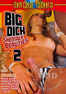 Big Dick Shemale Beauties 2 Box Cover