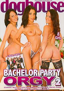 Bachelor Party Orgy 2 Box Cover