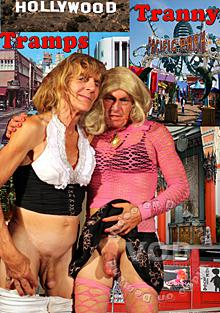Hollywood Tranny Tramps Box Cover