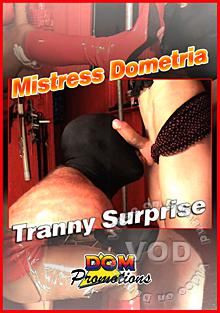 Mistress Dometria - Tranny Surprise Box Cover