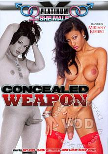 Concealed Weapon Box Cover
