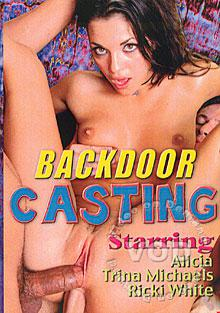 Backdoor Casting Box Cover