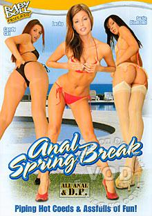Anal Spring Break Box Cover