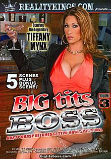 Big Tits Boss Volume 3